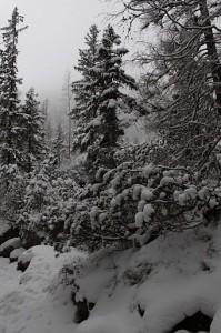 studenovodska-dolina