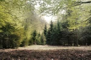 Španělsko: národní park Ordesa y Monte Perdido – leťme.cz